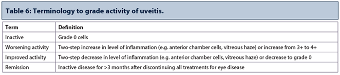 Grading of ocular inflammation in uveitis: an overview | Eye